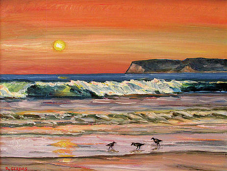 Coronado Beach Sunset with Shorebirds by Robert Gerdes