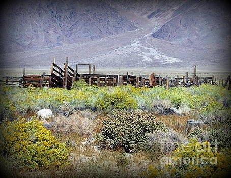 Corral in the middle of nowhere by Joy Patzner