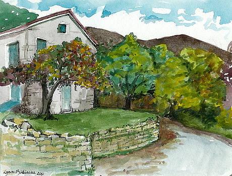 Cosica Italy by Lynn Babineau