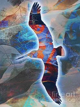 Cosmic Flyer by Robert Ball