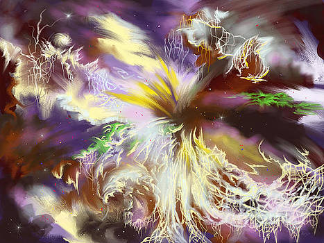The Flowering of the Cosmos by Amyla Silverflame