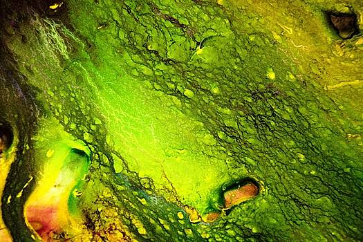 Cosmic Terrain by Willie Scaife