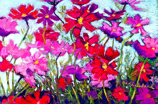 Cosmos Bouncing In The Breeze by Cheryl Whitehall