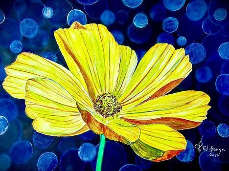 Cosmos by Ed Berlyn