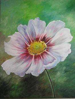 Cosmos by May Moore