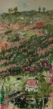 Costa Rica hills #2 by Adair Robinson