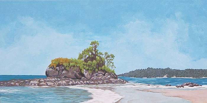 Costa Rican Coast by Robert Decker