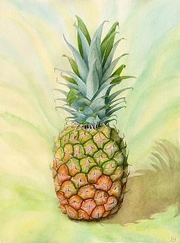 Costa Rican Pineapple by Lynne Henderson
