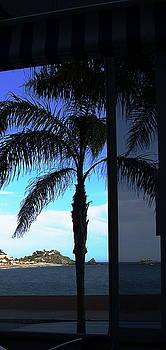 Costa Tropical by Liz Naepflin