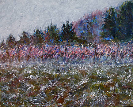 Cotes de Beaune Vineyard - Winter by SB Boursot