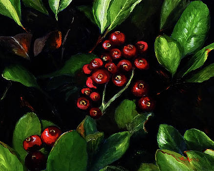 Cotoneaster by Vicki Rees