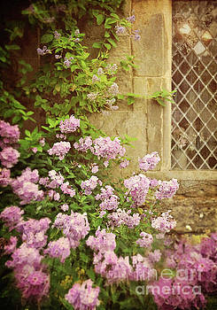 Cottage Garden by Lyn Randle