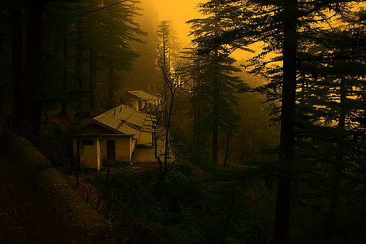 Cottage in woods by Salman Ravish