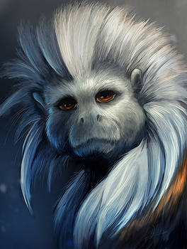 Cotton Top Tamarin by Cass Womack