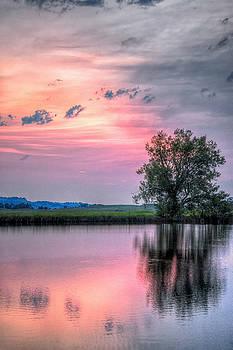 Cotton Candy Sunrise by Fiskr Larsen