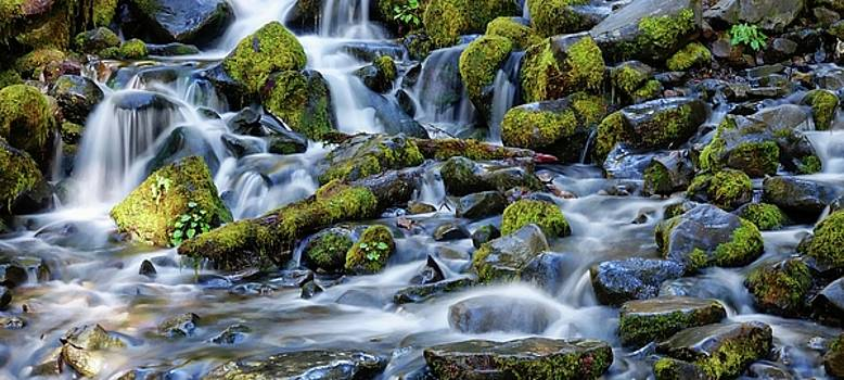 Cotton Cascade by Rick Lawler