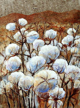 Cotton Fields by Candy Mayer