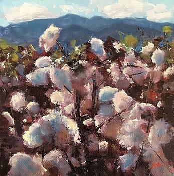 Cotton I by Kaia Thomas