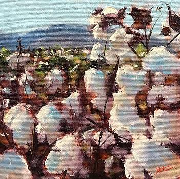 Cotton by Kaia Thomas