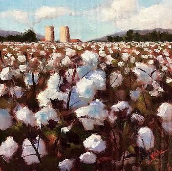 Cotton IV by Kaia Thomas