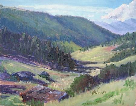 Cottontail Gulch by Sharon Weaver