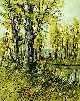 Cottonwood Pond by Steve Spencer