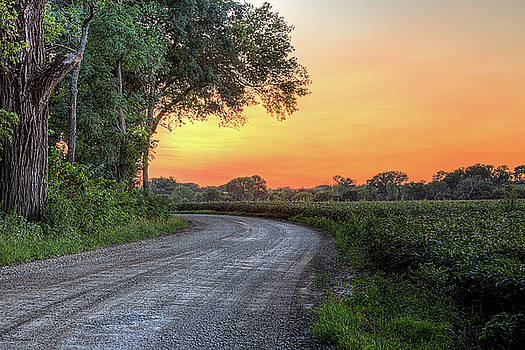 Cottonwood Sunset by JC Findley