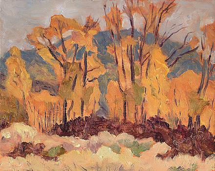 Cottonwood Trees Steamboat Springs Colorado by Zanobia Shalks