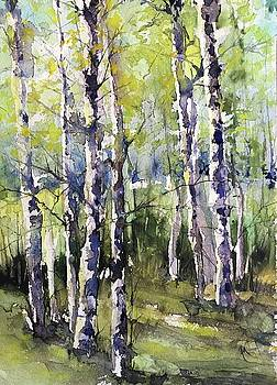 Cottonwoods and Sycamores by Robin Miller-Bookhout