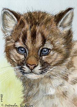 Cougar Cub Portrait aceo by Svetlana Ledneva-Schukina