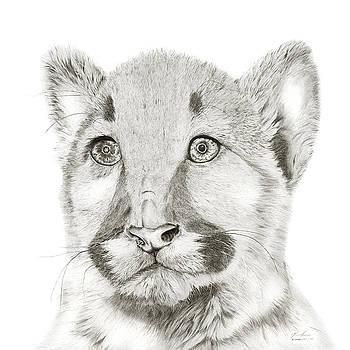 Cougar by Glen Frear