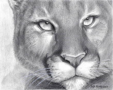Cougar Spirit by Carla Kurt