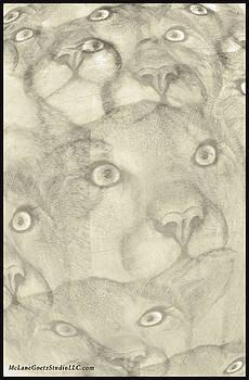 LeeAnn McLaneGoetz McLaneGoetzStudioLLCcom - Cougars on the Prowl