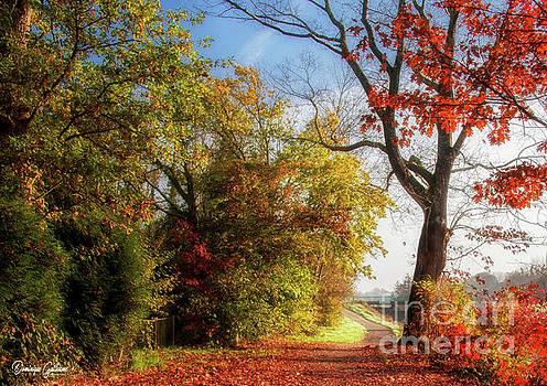 Autumn colors by Dominique Guillaume