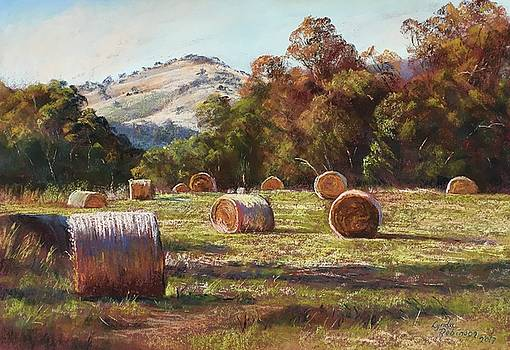 Coulson's Hay by Lynda Robinson