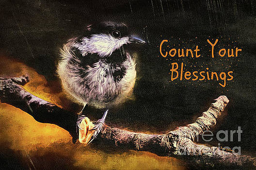 Count Your Blessings by Tina LeCour