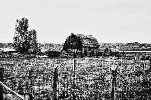 Country Barn 1 by Chris Berry