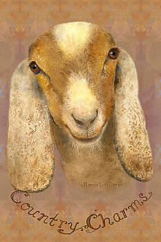 Country Charms Nubian Goat with Bright Eyes by Nancy Lee Moran