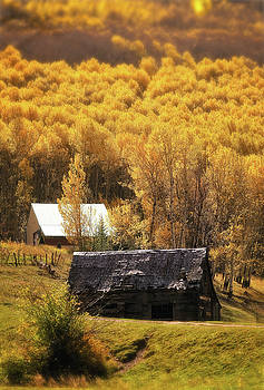 Country Colors by Stacy Burk