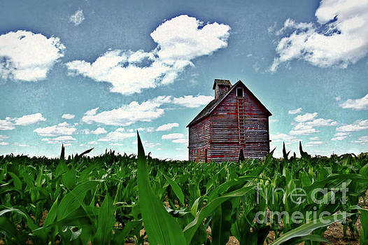 Country Crib And Corn by Kathy M Krause