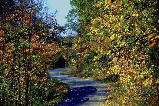 Gary Wonning - Country Drive