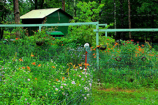 Country Garden by Carolyn Wright