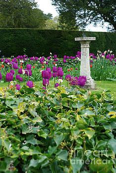 Country garden by Richard Gibb