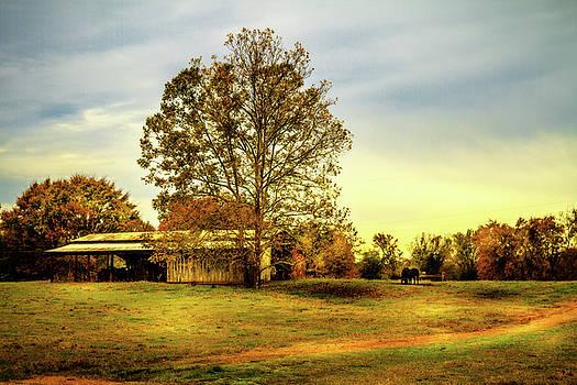 Country Landscape - Barn Art by Barry Jones