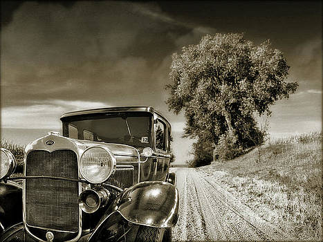 Country Lane by John Anderson