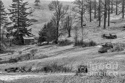 Country Life in Black and White by Thomas R Fletcher