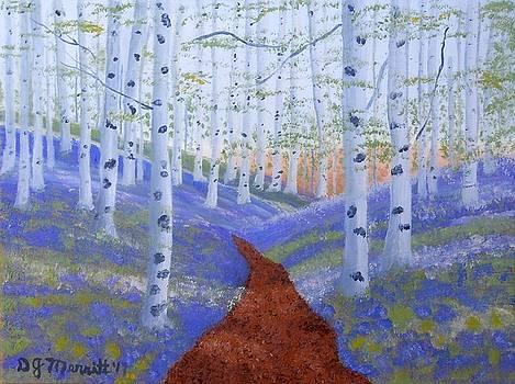 Country Road Birch by Dorothy Merritt