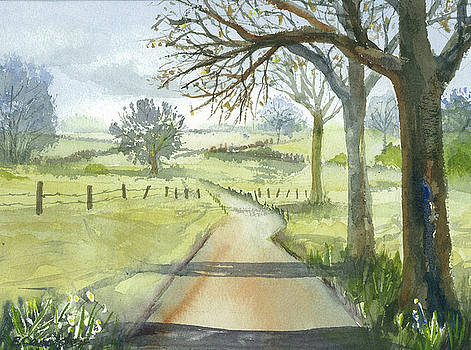 Country Road by Evelyn Cassaday