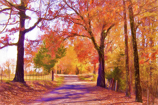 Country Road - Fall Landscape by Barry Jones
