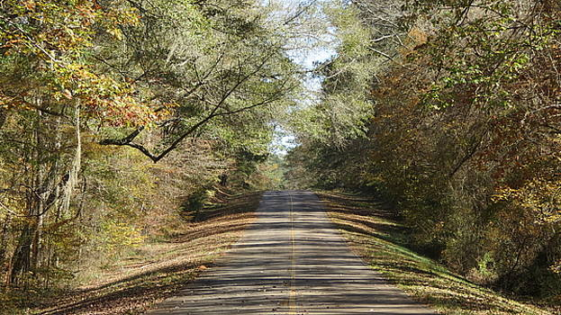 Country Road In The Fall by Issiah Ross